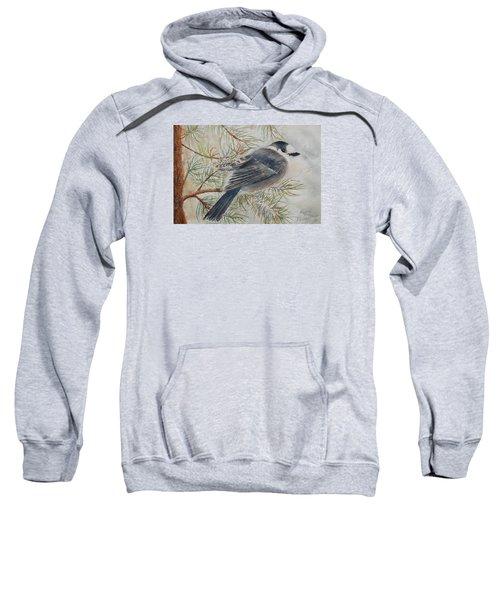 Grey Jay Sweatshirt