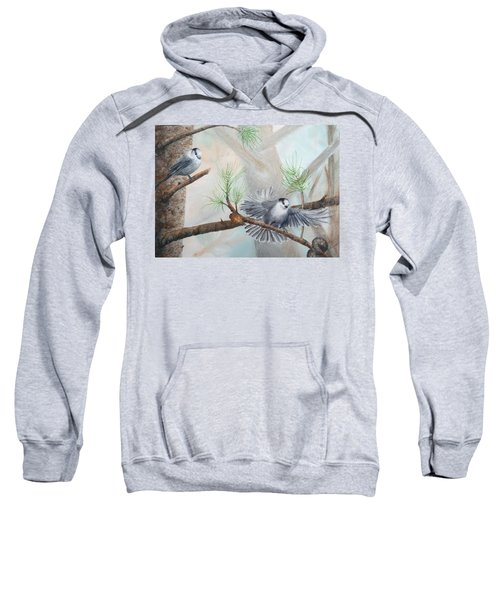 Grey Jays In A Jack Pine Sweatshirt