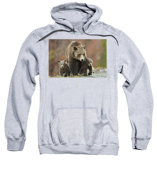 Grizzly Family Sweatshirt