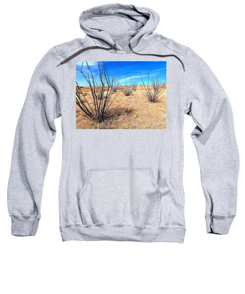 Ground Level - New Mexico Sweatshirt