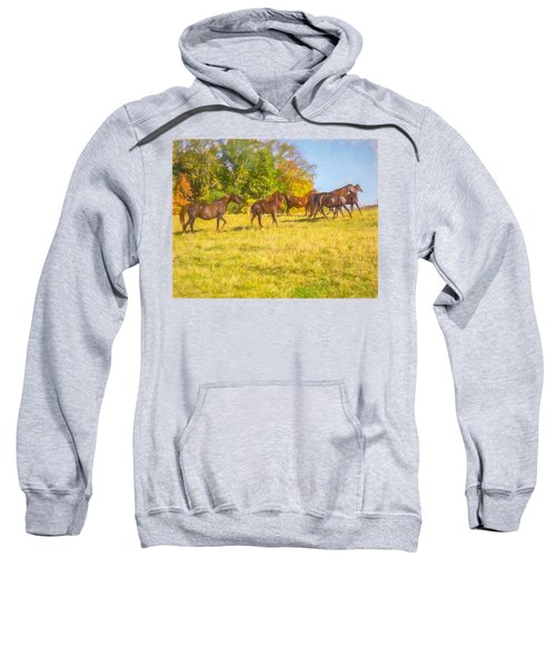 Group Of Morgan Horses Trotting Through Autumn Pasture. Sweatshirt
