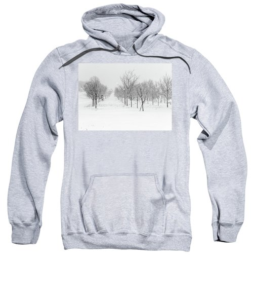 Grove Of Trees In A Snow Storm Sweatshirt