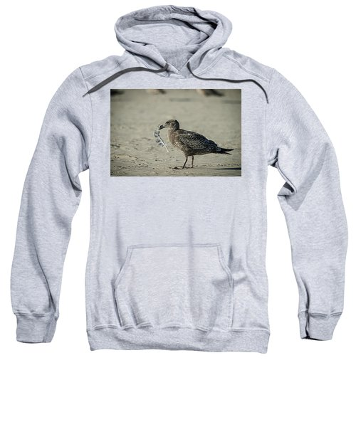 Gull And Feather Sweatshirt