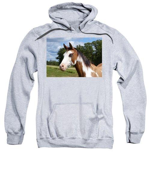 Gypsy Paint Sweatshirt