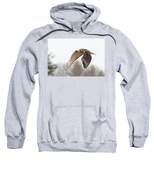 Hal Takes Flight Sweatshirt