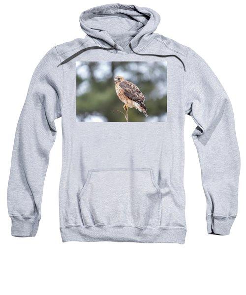 Hal The Hybrid Portrait 3 Sweatshirt