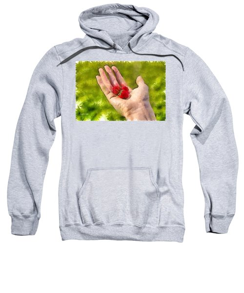 Hand And Raspberries - Da Sweatshirt