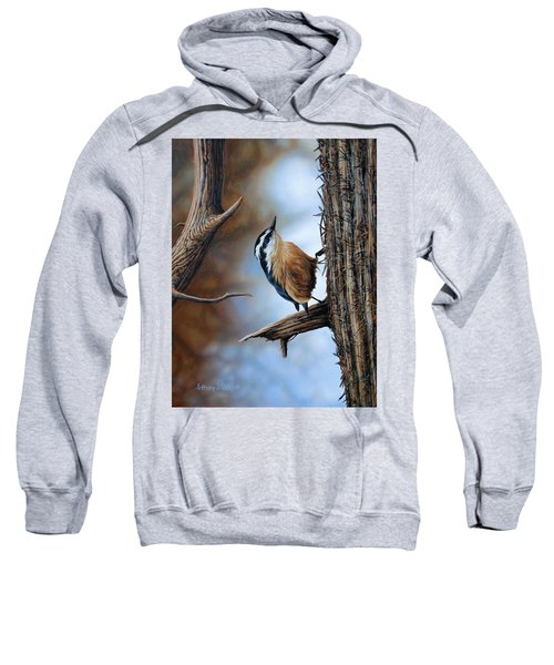 Hangin Out - Nuthatch Sweatshirt
