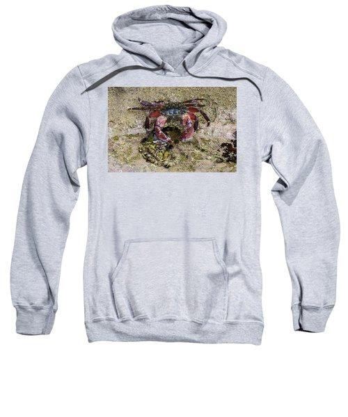 Happy Little Crab Sweatshirt