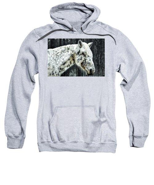 Hard Winter Sweatshirt