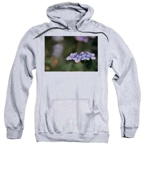 Hardy Blue Sweatshirt
