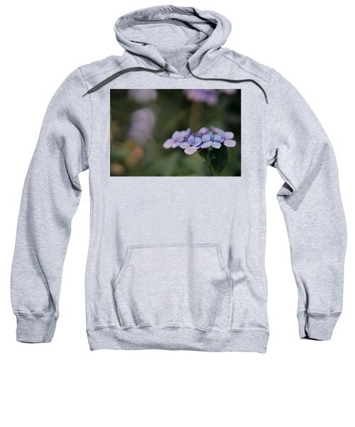 Hardy Blue Sweatshirt
