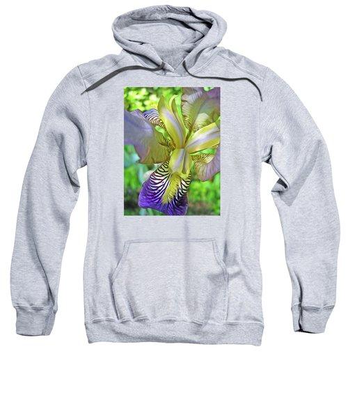Harmony 4 Sweatshirt
