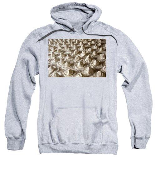 Hatscape Sweatshirt