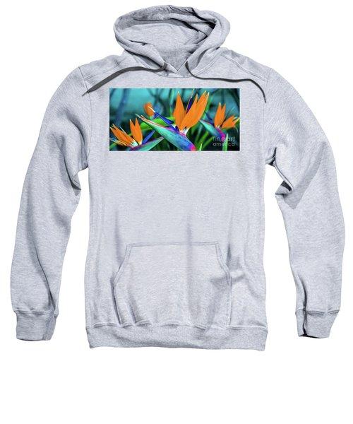 Hawaii Bird Of Paradise Flowers Sweatshirt