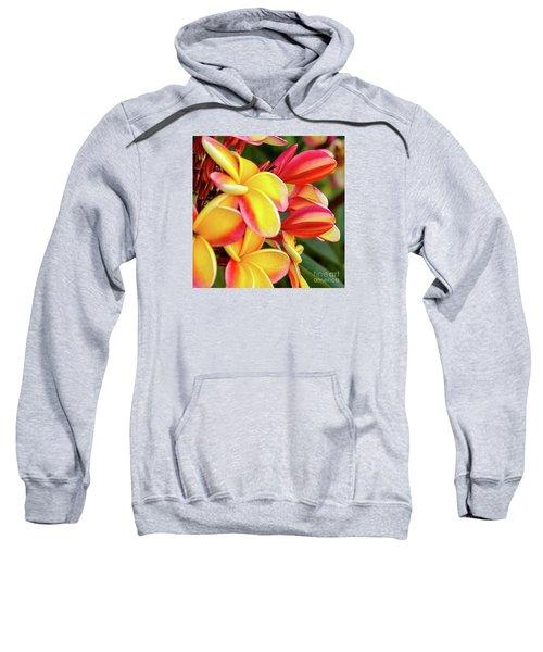 Hawaii Plumeria Flowers In Bloom Sweatshirt