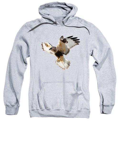 Hawk T-shirt Sweatshirt
