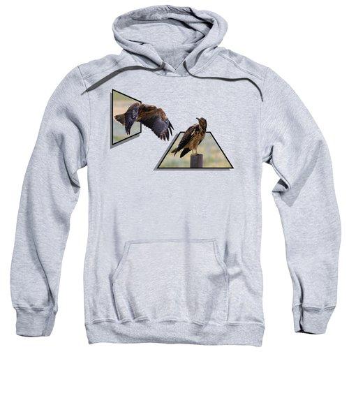 Hawks Sweatshirt by Shane Bechler