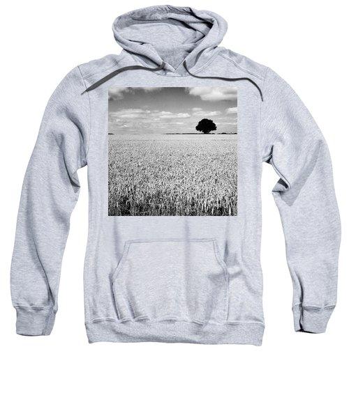 Hawksmoor Sweatshirt