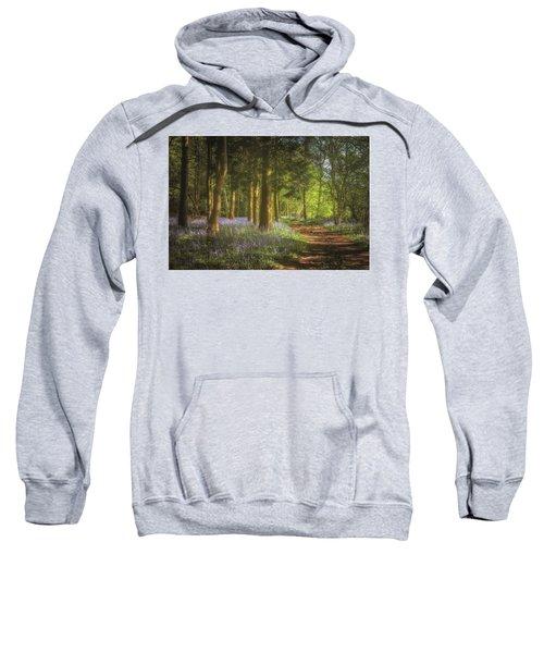 Hay Wood Bluebells 3 Sweatshirt