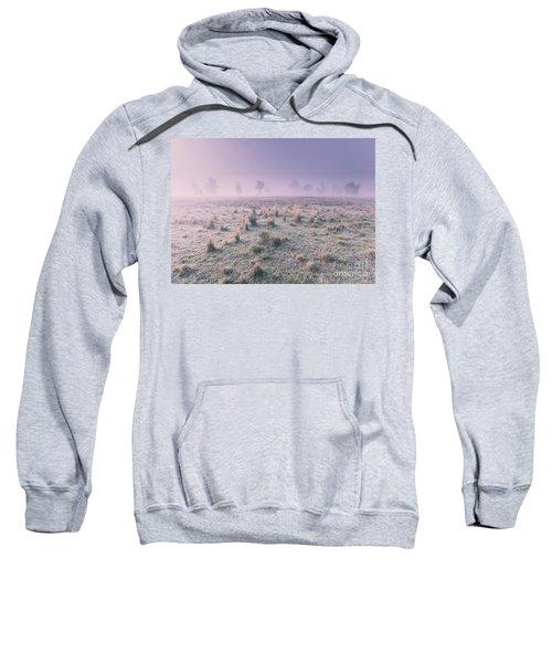 Hazy Australian Winter Scene Sweatshirt