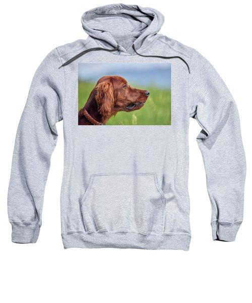 Head Study Sweatshirt