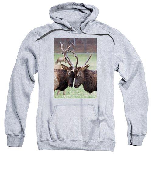 Head To Head Sweatshirt