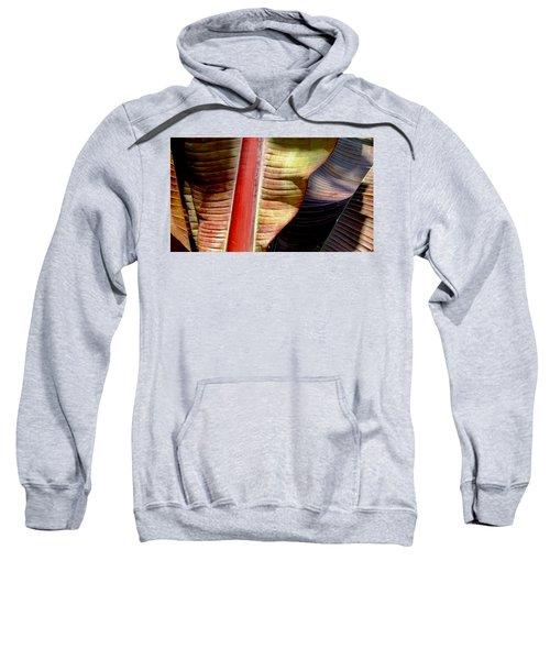 Heliconia Waves Sweatshirt