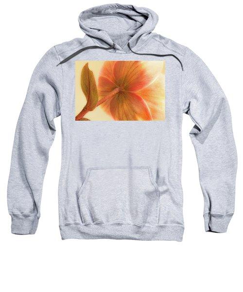 Hellebore Sweatshirt