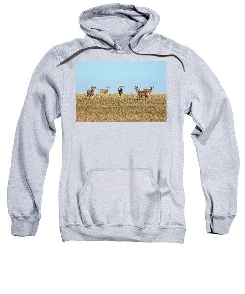 Herd Of Deer Sweatshirt