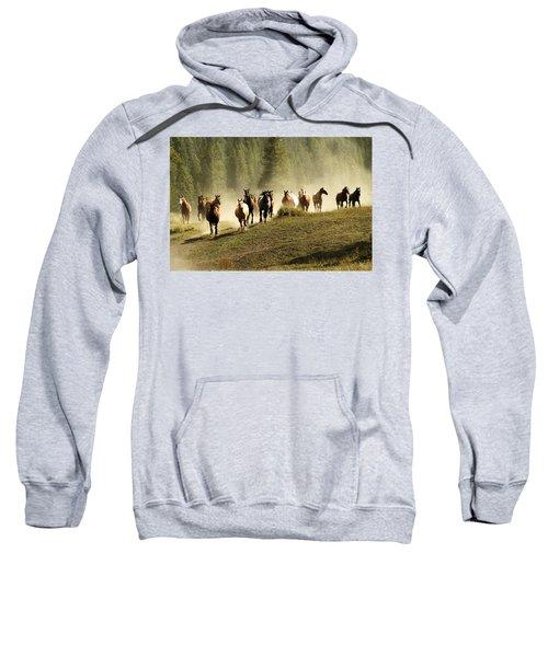 Herd Of Wild Horses Sweatshirt