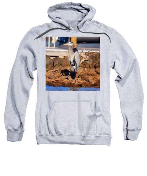 Heron On The Rocks Sweatshirt