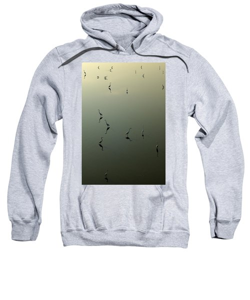 Herons On Lake 367 Sweatshirt