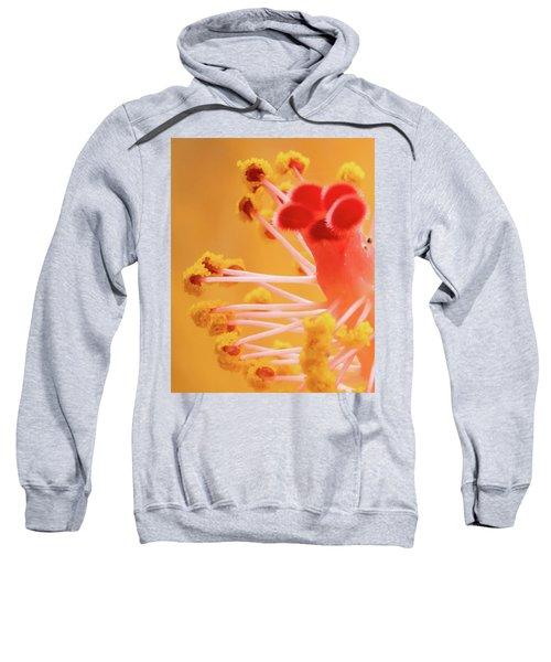 Hibiscus-2 Sweatshirt