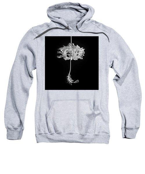 Hibiscus Schizopetalus Against A Black Background In Black And White Sweatshirt