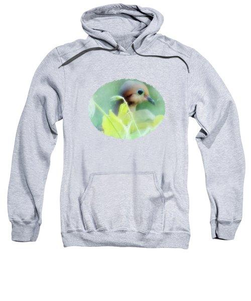 Hidden Nature Sweatshirt by Anita Faye