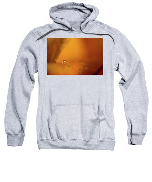 Hidden Treasure Sweatshirt