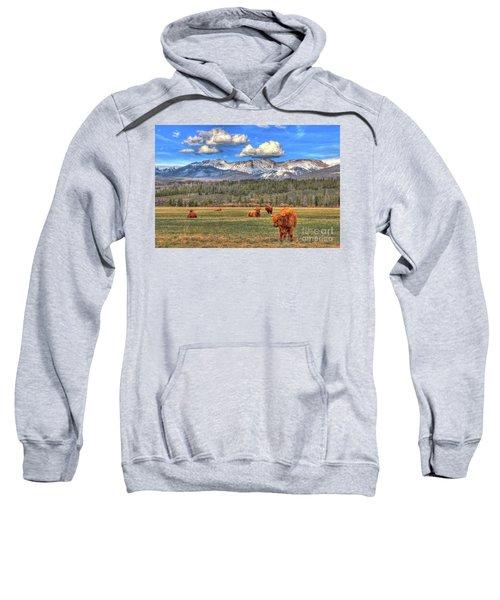 Highland Colorado Sweatshirt
