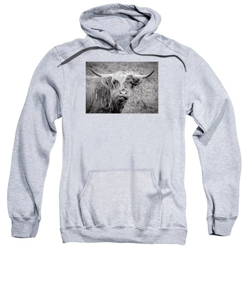 Highland Cow Sweatshirt by Jeremy Lavender Photography