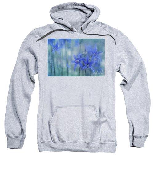 Hillside Blues Sweatshirt