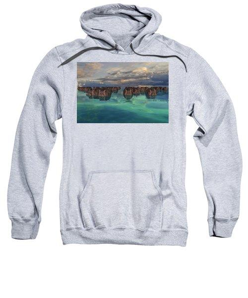 Hippos Sweatshirt
