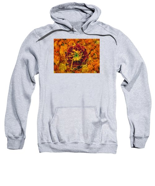 Home Grown Marigold Sweatshirt