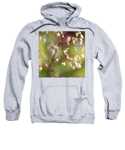Honey Acrobat Sweatshirt