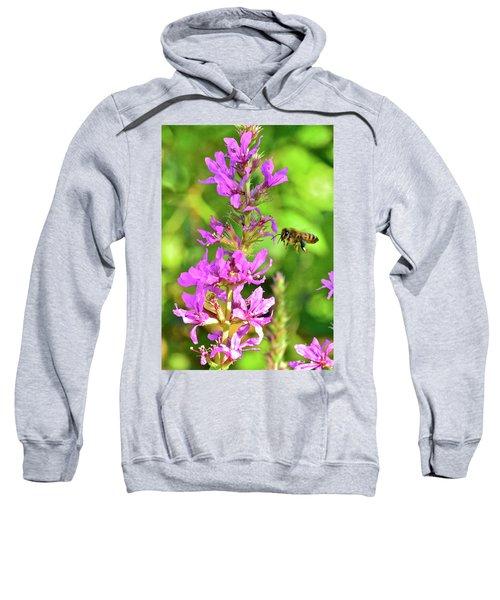 Honey Bee In Flight Sweatshirt