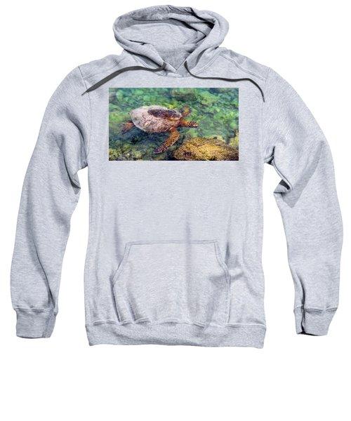 Honu Sweatshirt