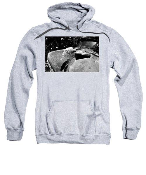 Hood Ornament Detail Sweatshirt