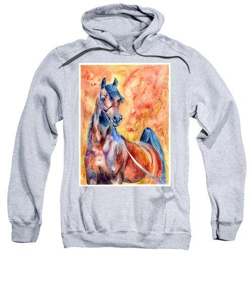 Horse On The Orange Background Sweatshirt