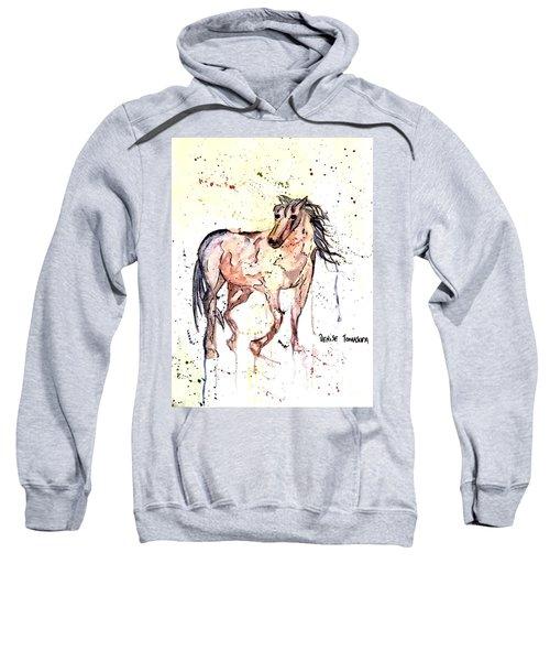 Horse Seekers Sweatshirt