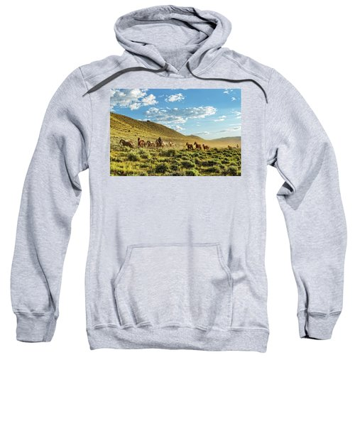 Horses And More Horses Sweatshirt