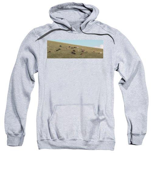 Horses On The Hill Sweatshirt